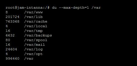 Unix/Linux Disk Space Management